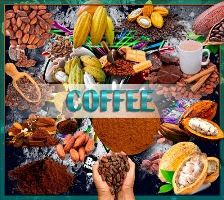 Png клипарты без фона - Какао и какао бобы